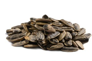 Roasted Unsalted Sunflower Seeds In Shell